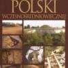 """""""Archeologia Polski wczesnośredniowiecznej"""" - A. Buko - recenzja"""