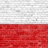 Murale patriotyczne w Toruniu - najlepsza inicjatywa oddolna