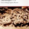 """""""Adrianopol 378. Goci rozbijają legiony Rzymu"""" - S. MacDowall - recenzja"""