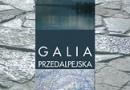 """""""Galia Przedalpejska. Studia nad rzymską obecnością w północnej Italii..."""" - M. Piegdoń - recenzja"""
