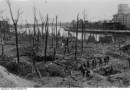 Westerplatte broni się dalej. Filmy o oblężeniu polskiej składnicy