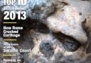 Odkrycie naukowców z UW w gronie 10 najważniejszych odkryć archeologicznych 2013 roku