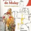 """Jakub de Molay. Zmierzch templariuszy"" - A. Demurger - recenzja"