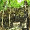 W dżungli odnaleziono dwa miasta Majów