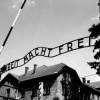 """Norwegowie bronią """"polskich obozów koncentracyjnych"""""""