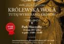 Wielki Piknik Historyczny - Królewska Wola 2017