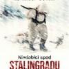 """""""Niedobici spod Stalingradu"""" – R. Busch – recenzja"""