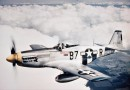 Mustang z Pomorza Zachodniego. Odkopią amerykański myśliwiec z czasów II wojny światowej.