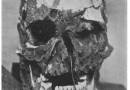 Ciemnoskórzy przodkowie. Naukowcy udowodnili, że skóra pierwszych Brytyjczyków była niemal czarna.