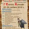 VII Turniej Rycerski w Strzegomiu 2018