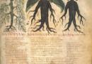 Historia medycznego znieczulenia. Czyli jak człowiek pokonał ból