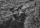 Historia drutu kolczastego. Wynalazek farmera zrewolucjonizował pola bitew