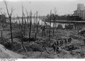 Las na Westerplatte po zakończeniu walk / fot. Bundesarchiv, Bild 183-2008-0513-500, CC-BY-SA