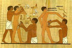 Najstarsze zachowane malowidło przedstawiające rytuał obrzezania, datowane na 2350-2000 r. p.n.e. Świątynia Sakkara (Egipt)