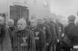 Więźniowie Sachsenhausen w czasie istnienia obozu
