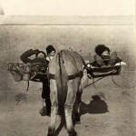 Rosyjski ambulans, nosze przytwiedzone do boków konia, 1904