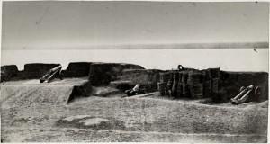 Umocnienia nad brzegiem Dunaju, 1877