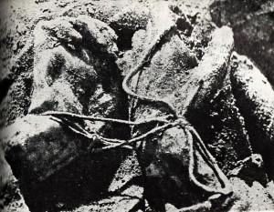 800px-Katyn_massacre